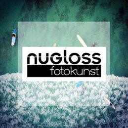 Felix-Moese-Nugloss-Cover-2